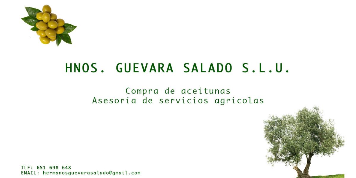 Hermanos Guevara Salado S.L.